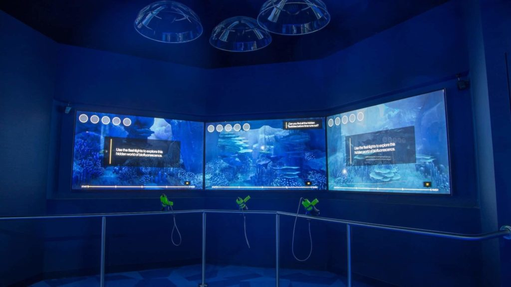 Interactive Experiences at Museums