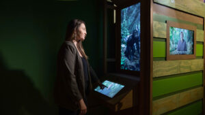 Interactive Experience for National Geographic