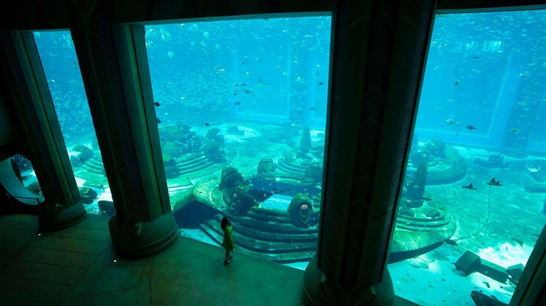 三亚亚特兰蒂斯 – 失落的空间水族馆