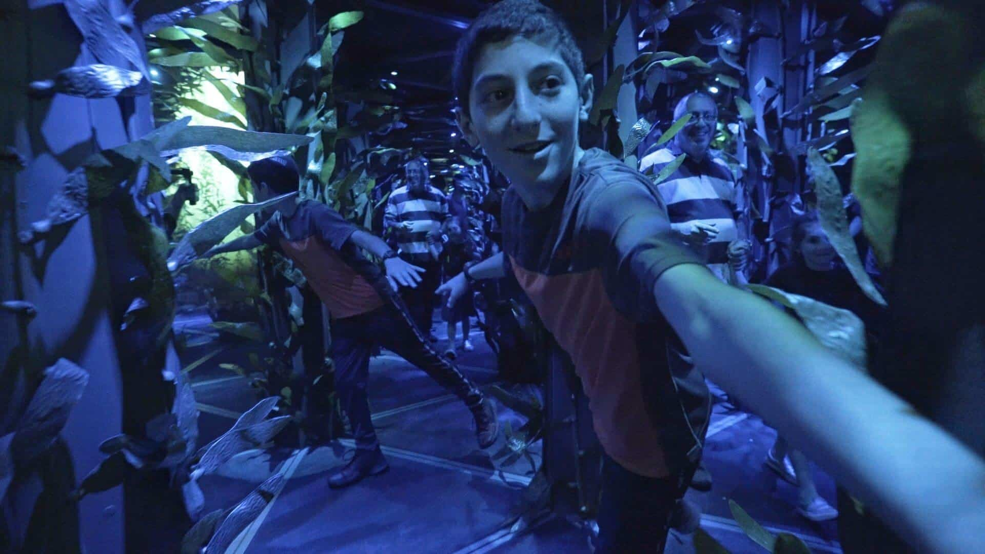National-Geographic-Encounter-Kelp-Maze